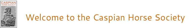www.caspianhorsesociety.org.uk